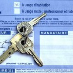 bail location immobilier