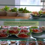 Grille et salaire minimum restauration de collectivités 2013 conventionnel