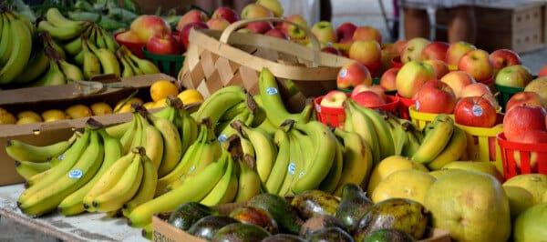 Barème, salaire moyen et salaire minimum expédition et exportation fruits et légumes 2012