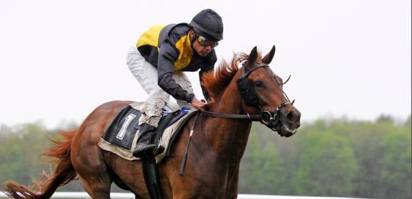Barème salaires, salaire moyen et salaire minimum entraînement chevaux de courses au galop 2012