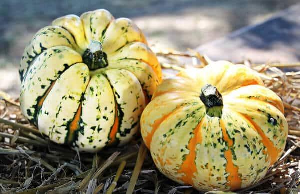 Grille et salaire minimum expédition fruits et légumes 2013 conventionnel