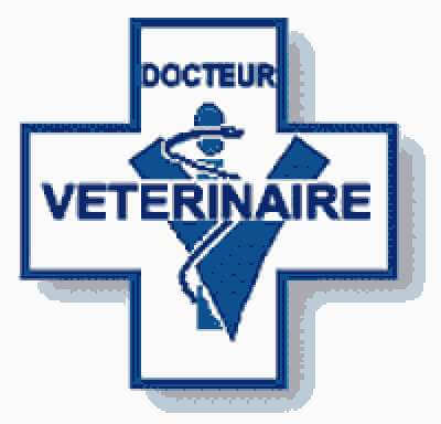 Grille et salaire minimum vétérinaire 2014 conventionnel