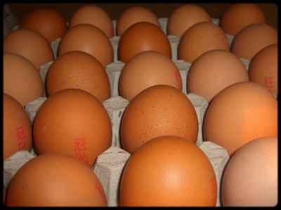 Grille et salaire minimum œufs 2014 conventionnel