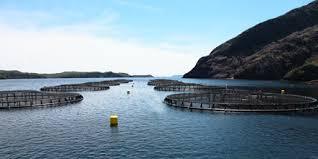 Barème salaires, salaire moyen et salaire minimum aquaculture 2015