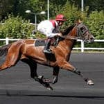 Grille et salaire minimum entraînement chevaux de courses au trot 2011