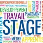 Modèle de lettre d'engagement pour un stage étudiant