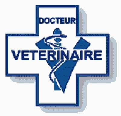 Grille et salaire minimum vétérinaire 2018 conventionnel
