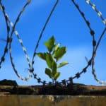 Projet de loi de pour le droit et l'autonomie des majeurs protégés