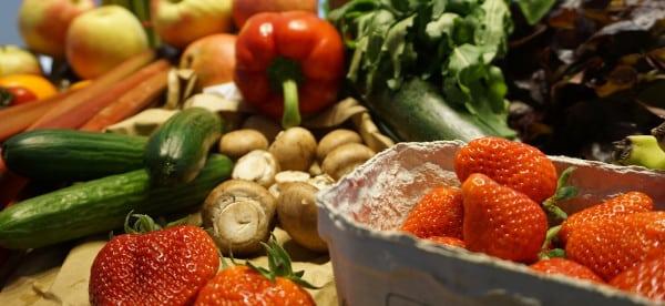 Barème salaires, salaire moyen et salaire minimum des coopératives fruits et légumes 2019